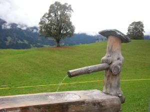 Brunnen beim Bodmi Grindelwald