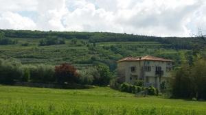 Italia Pfi 1